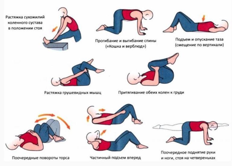 Упражнения при грыже грудного отдела