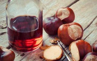 Готовим лекарство из каштанов: лучшие народные рецепты для суставов