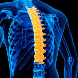 Симптомы остеохондроза грудного отдела: как лечить позвоночник?