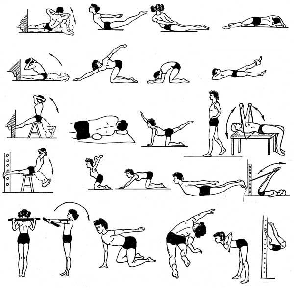 Упражнения для мышц