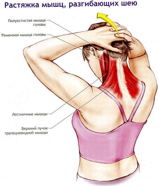 Разминка затёкших мышц