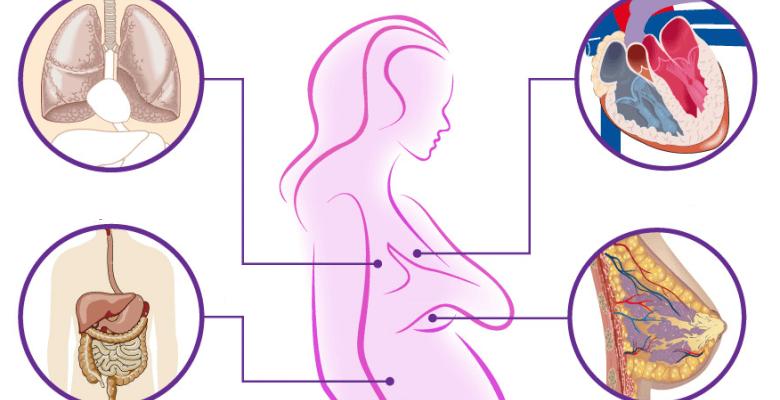Особенности физиологии при беременности